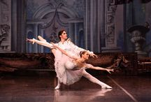 Balletto dell'Opera di Kiev - La bella addormentata / ParmaDanza 2016, Info: http://www.teatroregioparma.it/Pagine/Default.aspx?idPagina=258