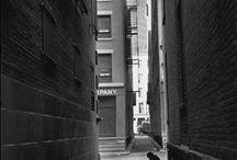 BW Street / Photography