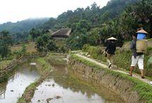 Trek Ha Giang