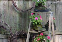 Gardening & Outdoor / by Susan Metzger