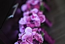 Radiant Orchid - Pantone 2014 Color of the Year