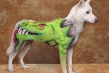 Dog / Cat Grooming / Dog Grooming