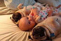 Cute as a Button / by Jennifer Gray-Photography
