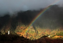 Madeira - Landscape
