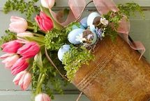 Think Spring / by Gassafy Wholesale Florist