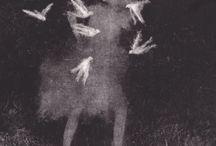 sophie lecuyer