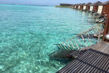 Resorts in Maldives. / #resortsinmaldives #maldivesresorts #paradisemaldives.