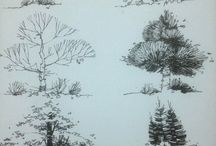 tree draw