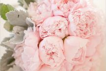 Pink Weddings / weddings with pink color schemes