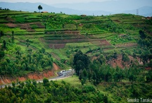 TOUR OF RWANDA / Tour of Rwanda