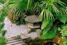 Crispin & Carly Garden