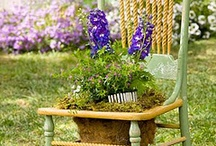 Garden Therapy / by Wendy Elmore