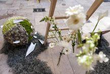 VERDNATURE. ENCUENTROS CDICV 2014 / diseño floral , stand de feria , valencia