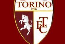 """IL GRANDE TORINO / """" TORO """""""