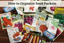 Seeds organizer & tutorial !!! / by Svetlana Dannevig