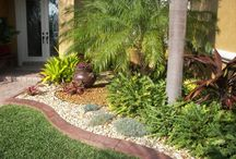 Florida Landscaping / by S Lily