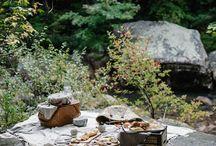 Outdoor Dining/Picnics