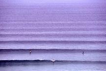 Sea / by Kelsie Kikuchi