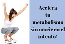 metabolismo activo
