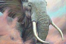 Motivuj slona