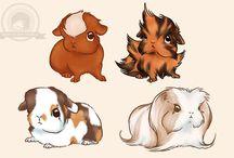 Guinea pigs love :*
