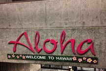 Lei Greeting Stories / Welcome to Honolulu, Hawaii!  Here are some great shots of our happy visitors to our beautiful island of Oahu.  They each have their own story and we hope to document their first step into this awesome paradise!