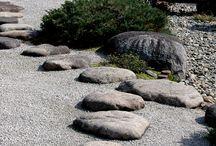 Kalliopuutarha