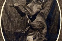 Vintage Pit Bull photographs <3 / by Chris Lueken