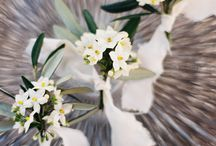 florystyka / kwiaty, kwiaty, kwiaty!