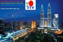 """Travel the world with DXN: One World, One Nation, One Love! / Let's travel the world together with DXN:   It is all possible with simply being the product yourself! ,,Trust the product, use the product, share the product""""  Business for simple people in a simple way, your own way. Join DXN Ganoderma business all over the world: http://www.dxncoffeemagic.com/contact"""