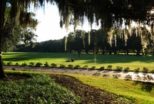 Best Savannah Picnic Spots + Food / Green Palm Inn shares #Savannah picnic ideas for 'Picnic in the Park' -- usually Forsyth Park -- or on Tybee Island beach or simply selecting a park bench in one of Savannah #Georgia's magnificent and world-famous garden squares!