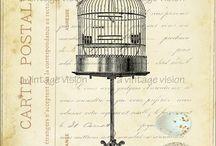 afbeeldingen vogelkooien en huisjes