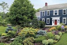 Curb Appeal / Make the most of your home