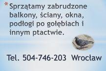 Czyszczenie po gołębiach, Wrocław, tel504746203, sprzątanie strychu, balkonu po gołębiach, / Sprzątanie gołębich odchodów, tel 504-746-203, czyszczenie balkonu, strychu po gołębiach, ptakach we Wrocławiu. Czyszczenie zabrudzonych balkonów,  ścian,  okna,  czyszczenie podłogi po gołębiach i innym ptakach, usuwanie, czyszczenie, zanieczyszczonych przez ptasie odchody miejsc, pomieszczeń, strychu, poddasza we Wrocławiu. http://www.omegaplus.home.pl/sprzataniepogolebiach/