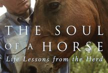 Books from The Soul of a Horse / The books of Joe Camp. There are 14 of them. Many of them Best Sellers and most are helping to change the world for the better for horses.