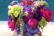 Flowers! / by Lisa Shockney