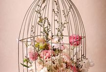 birdcages decoration