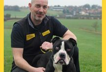 Darlington / Darlington Rehoming Centre first opened in May 1994, and since that time we have rescued, rehabilitated and rehomed over 18,000 dogs. A big thank you to all those who have rehomed a dog and who have helped in any capacity with our work.  Today, our centre cares for 120 dogs at any one time, including our sponsor dogs Copper and Kylo.  If you would like to speak to the Rehoming Centre team please contact 01325 333 114.