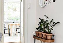 Pflanzen | Plant Box