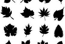 moldes de hojas