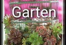 12. Garten (Pflanzen und Tipps) / PFLANZEN UND TIPPS