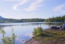 Swedish hideaways / The Swedish nature