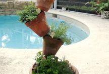 gardening/ Home exterior / by Laura Kassahn