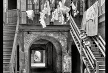 Photograhy / by Julianne Steinmetz