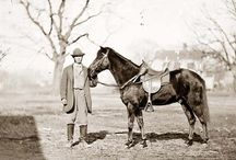 Horses in Gray: Famous Confederate Horses of the Civil War / Nonfiction book about horses and mules that served in the Confederate army during the American Civil War. https://jdrhawkins.com/