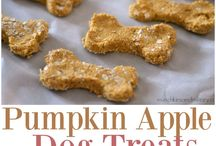 Dogs Treats