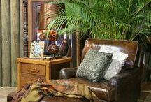 Bedroom tropics / by Cynthia Landry