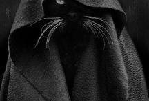 black profile / imagens obscuras... ideais para perfis.