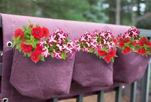 Flower Pots / We have a larege range of Flower Pots, for all needs. Whether you're planting herbs, flowers or small tress we have a flower pot for you.