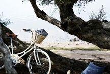 Eco-viaggi: viaggiare eco-sostenibile